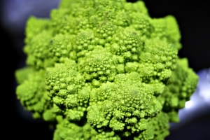 2016-11-05 Alien food. - the romanesco - aided by some silver mannequins