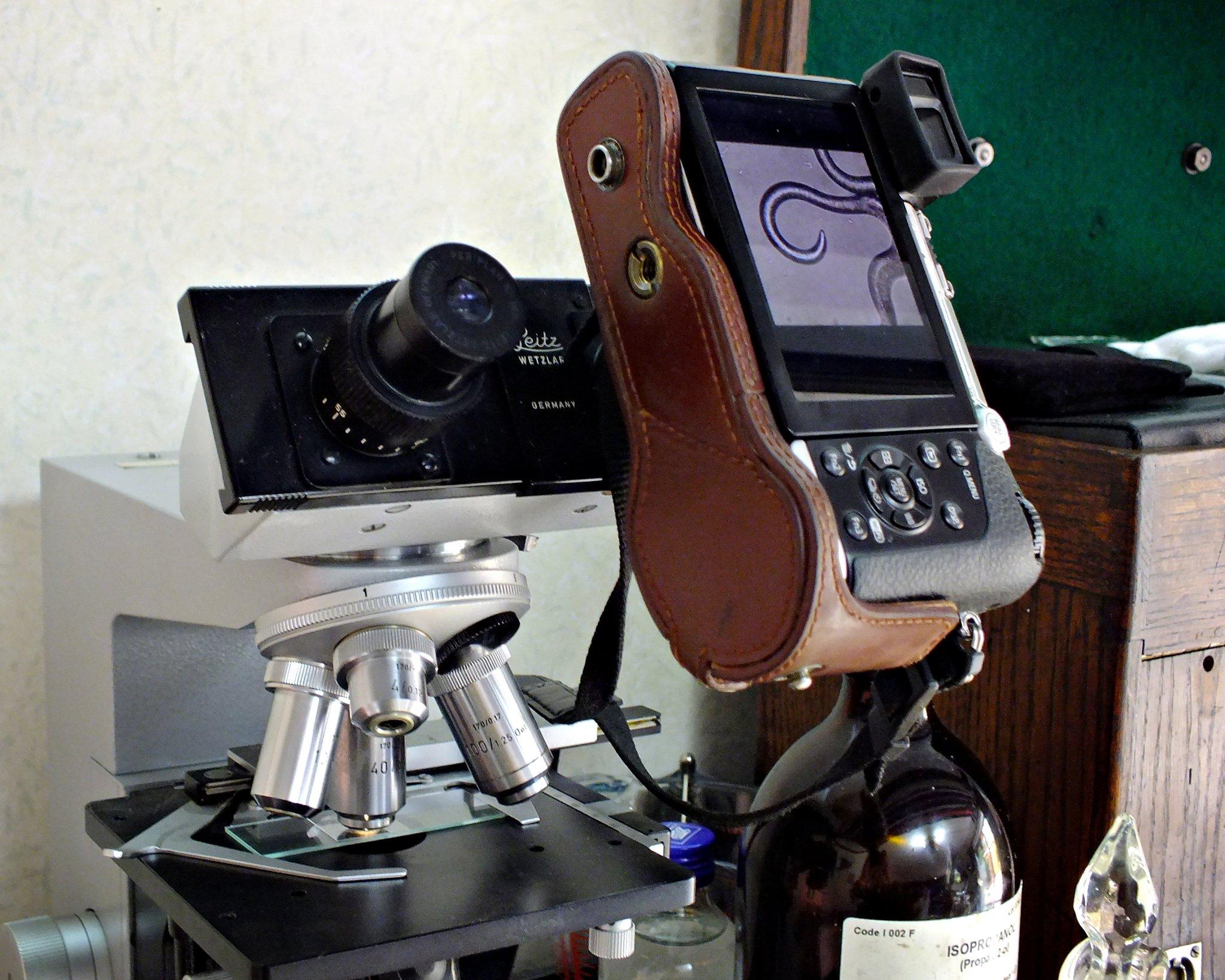 20170728-dscf6061-microscope