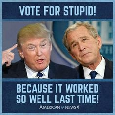 20200724-trump-vote-for-stupid